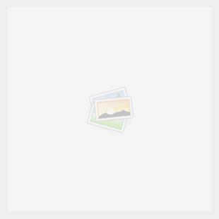 nosofiberskop